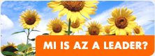 Mi is az a LEADER?